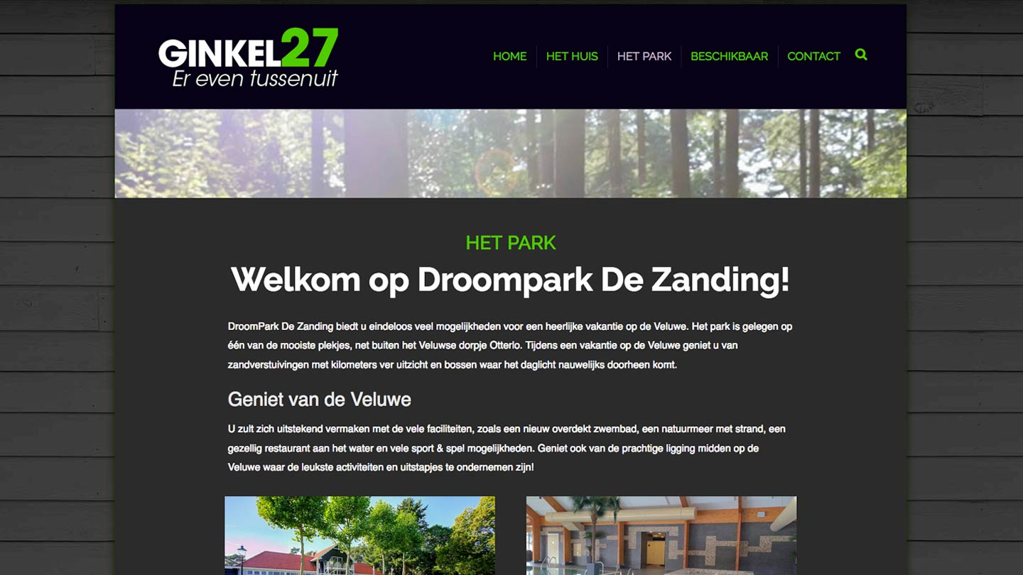 rcm-creative-website-ginkel27-2